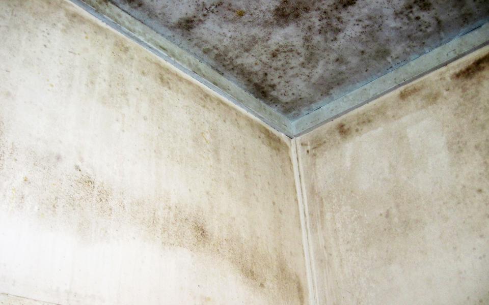 パネルの貼替えで新品同様に!浴室の改修工事