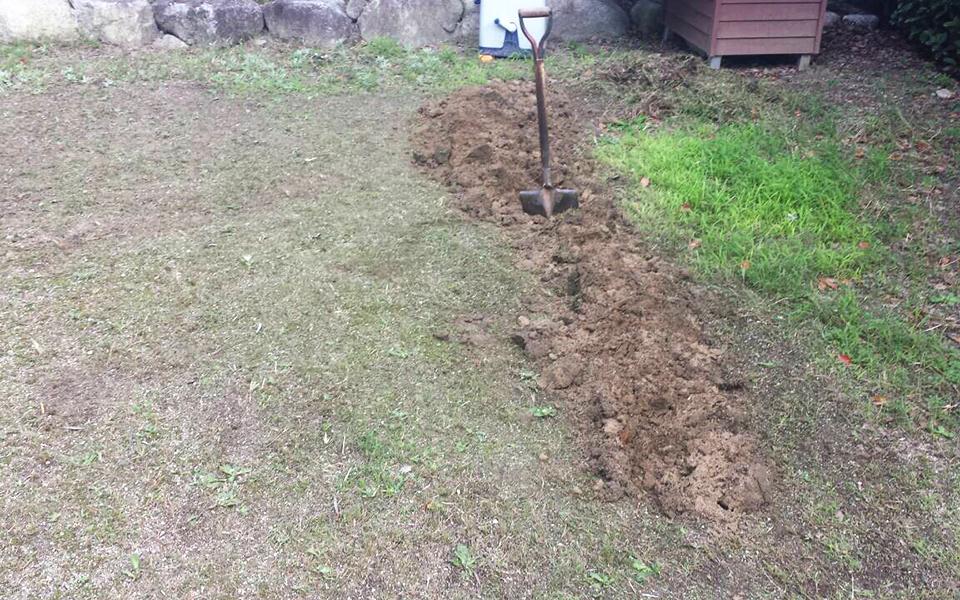 土を掘り起こす。
